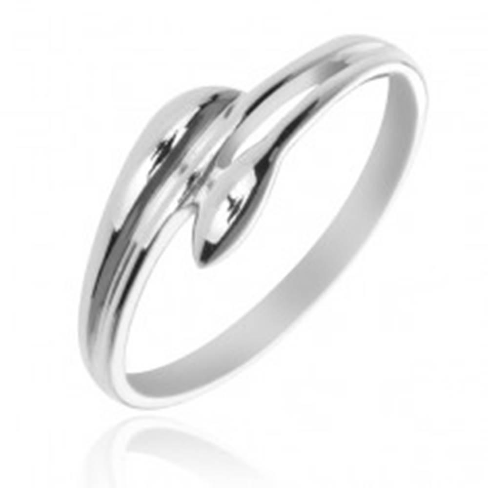 Šperky eshop Strieborný prsteň 925 - rozvetvené ramená v podobe listov - Veľkosť: 50 mm