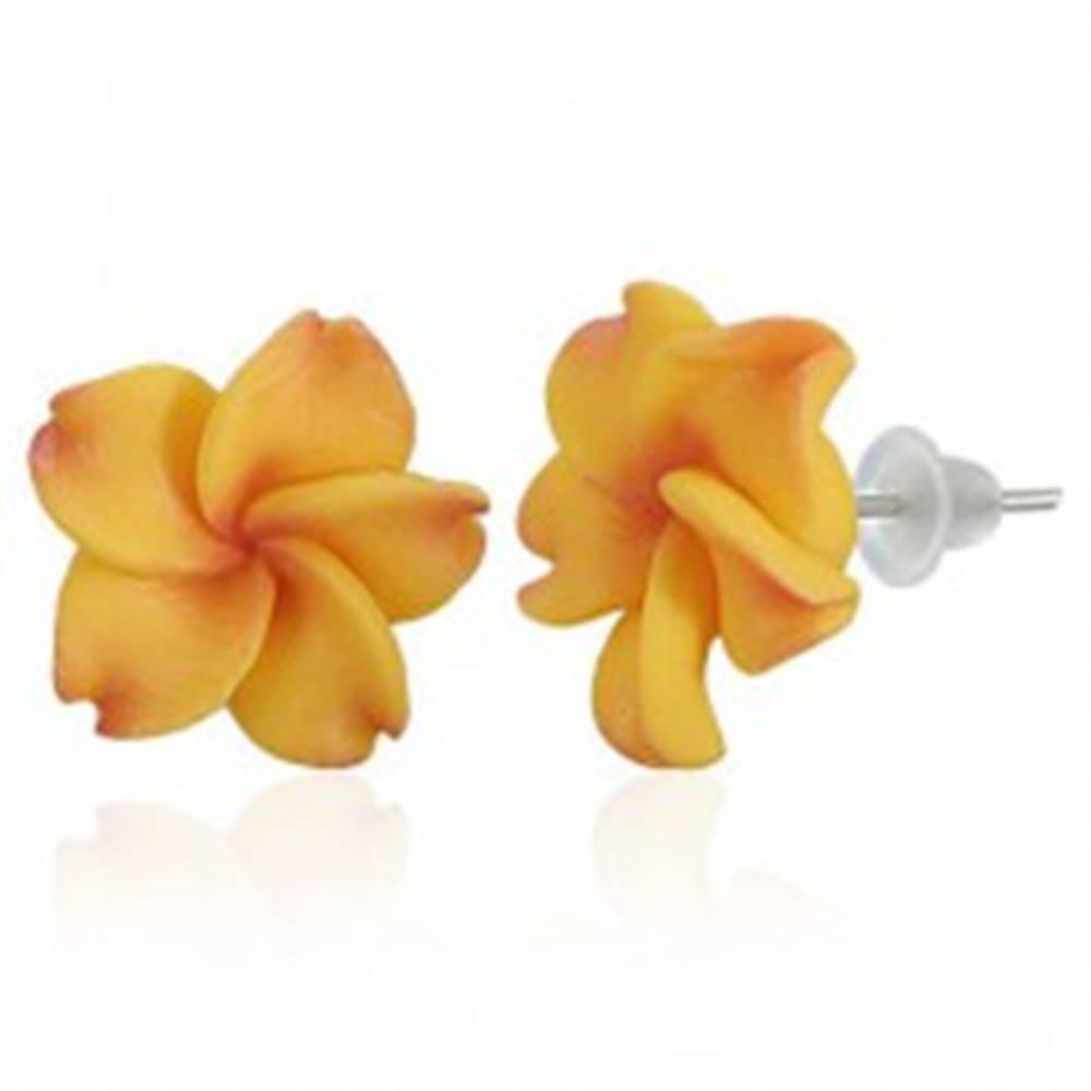 Šperky eshop Puzetové FIMO náušnice - žltočervený kvet Plumérie