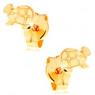 Zlaté náušnice 585 - lesklá korytnačka s gravírovanými detailmi