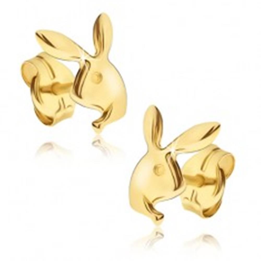 Šperky eshop Náušnice v žltom 14K zlate - lesklá hlava zajačika