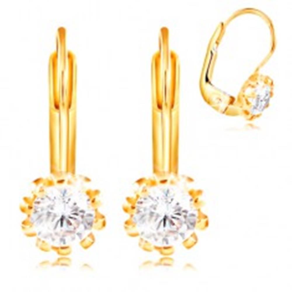 Šperky eshop Náušnice zo žltého 14K zlata - číry zirkón husto lemovaný kolíkmi, 4 mm
