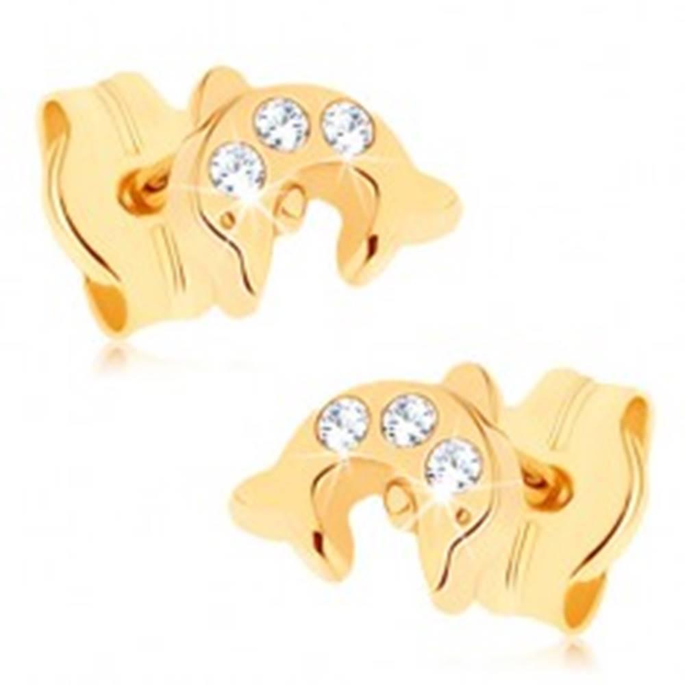 Šperky eshop Zlaté náušnice 375 - lesklý skáčuci delfín, tri okrúhle číre zirkóniky