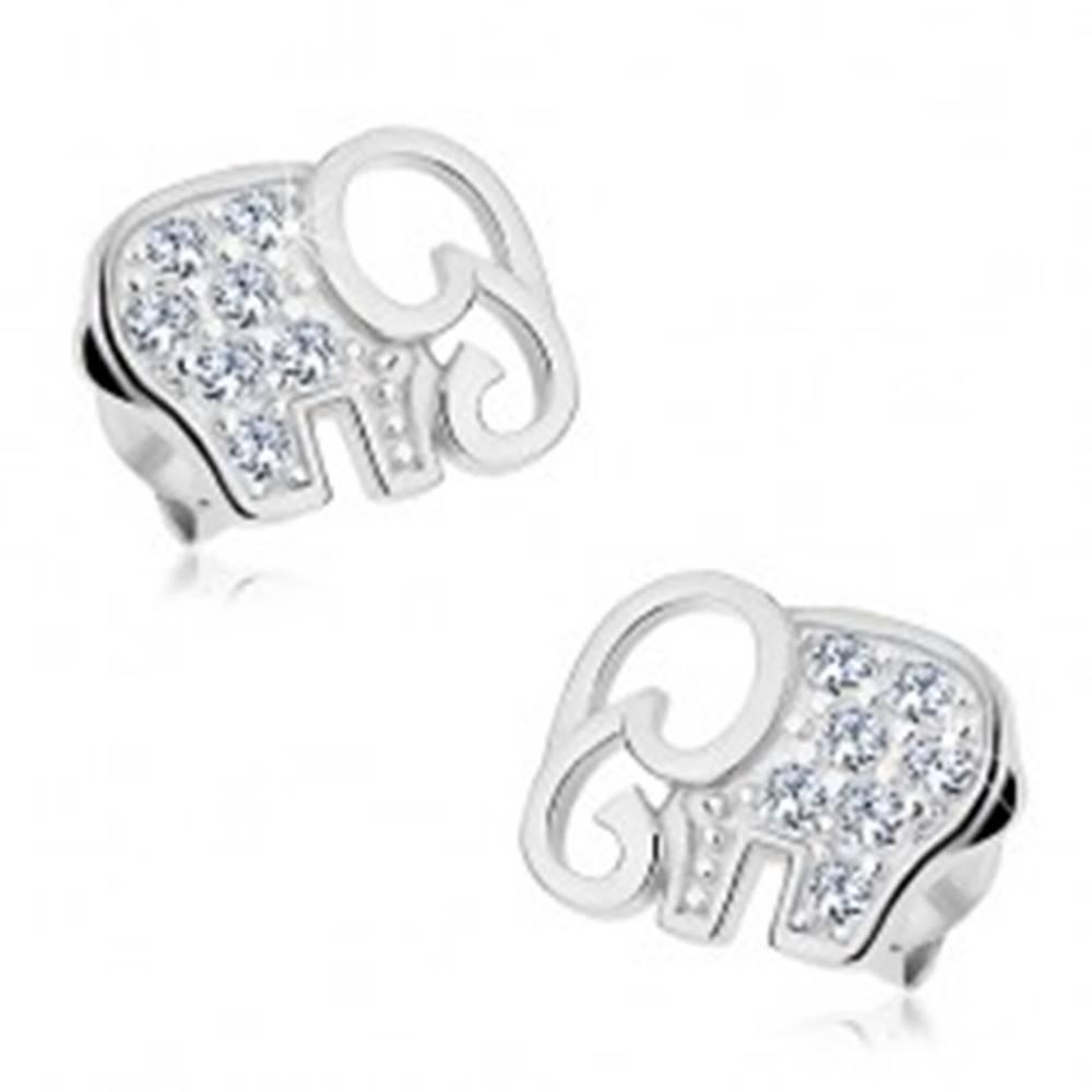 Šperky eshop Puzetové náušnice - striebro 925, trblietavý sloník vykladaný čírymi zirkónmi