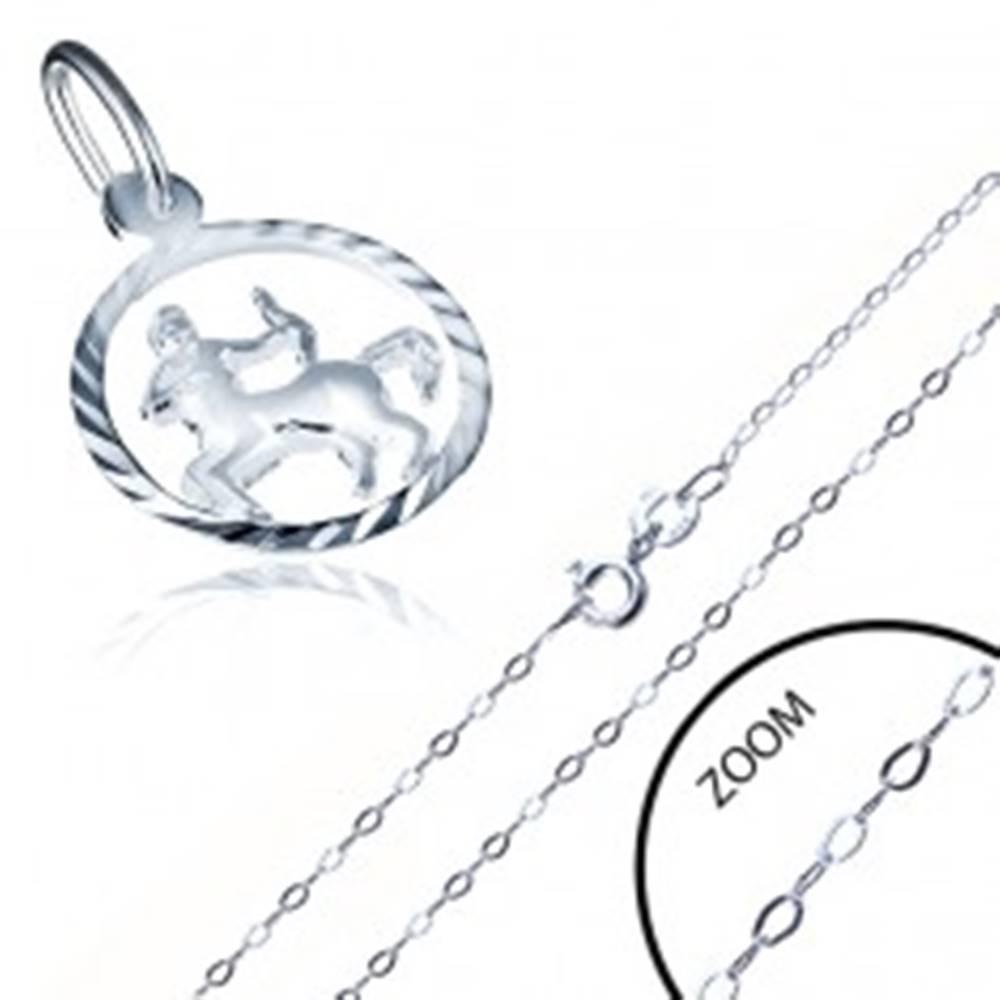 Šperky eshop Strieborný náhrdelník 925 - jemná retiazka a prívesok znamenia STRELEC