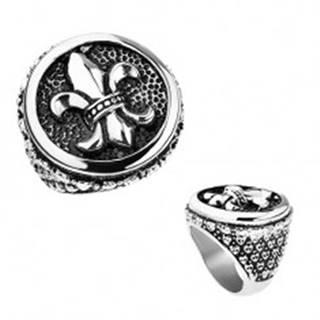 Prsteň z ocele, strieborná farba, patina, Fleur de Lis v kruhu, srdiečka - Veľkosť: 56 mm