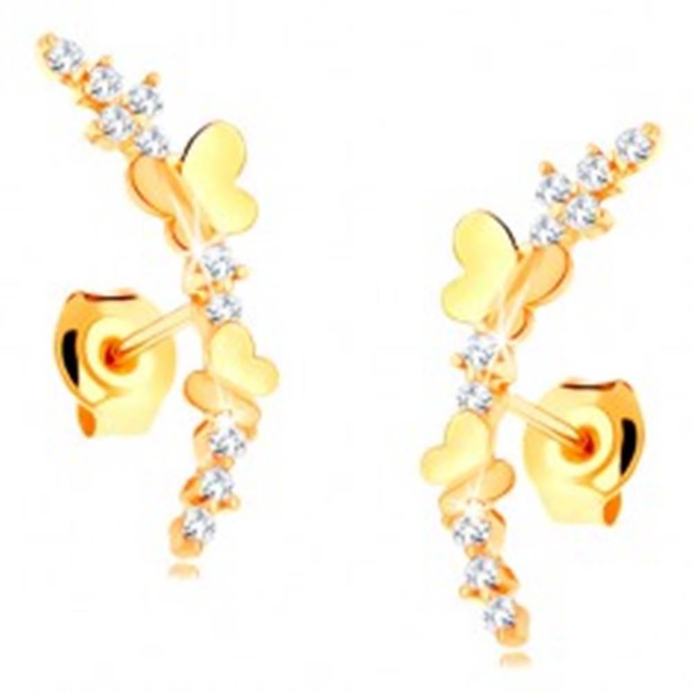 Šperky eshop Náušnice zo žltého 14K zlata - číra zirkónová vetvička, lesklé motýle