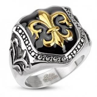Prsteň z chirurgickej ocele - kráľovský znak, štít - Veľkosť: 57 mm