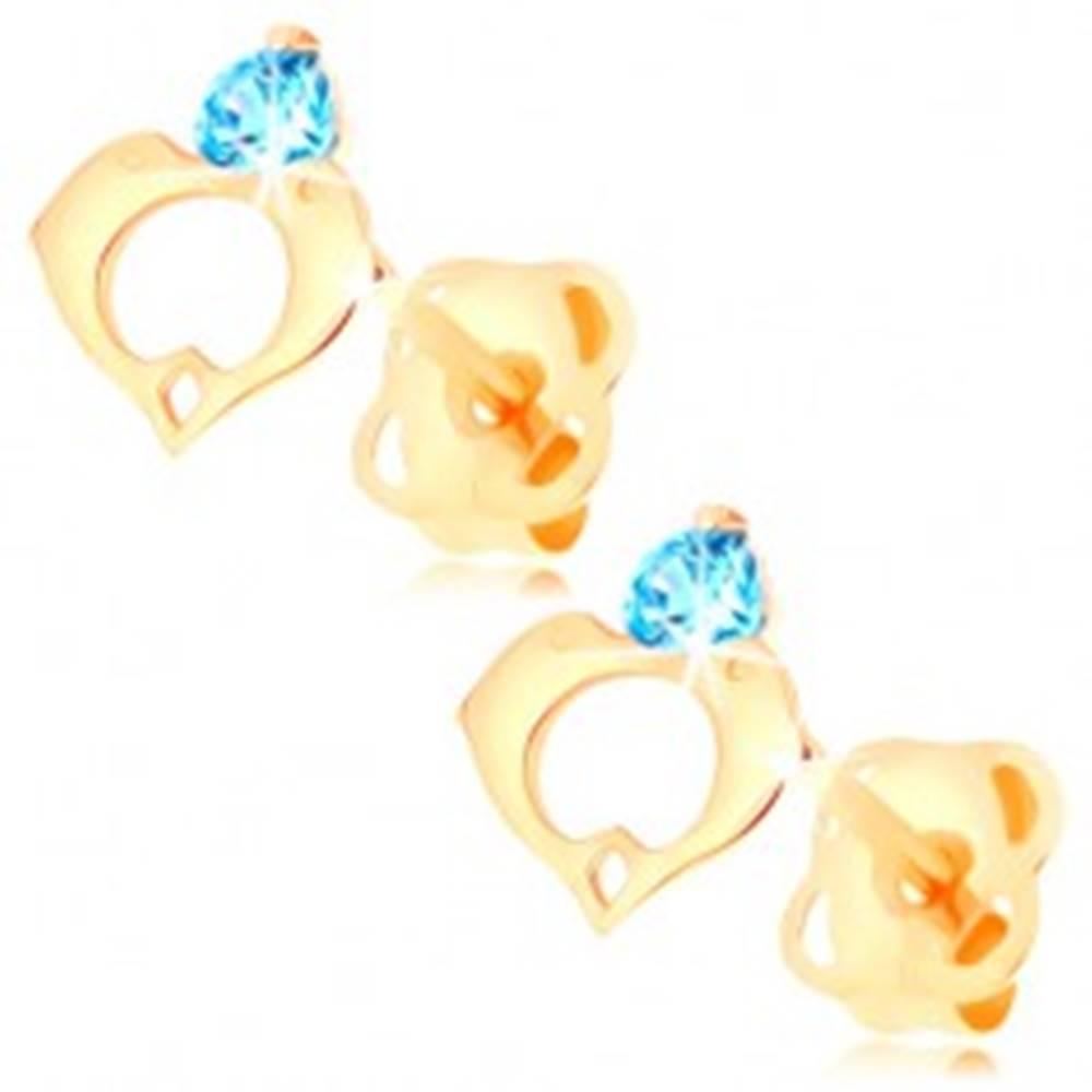 Šperky eshop Náušnice v žltom 14K zlate - modrý zirkón, kontúra srdca z dvoch delfínov