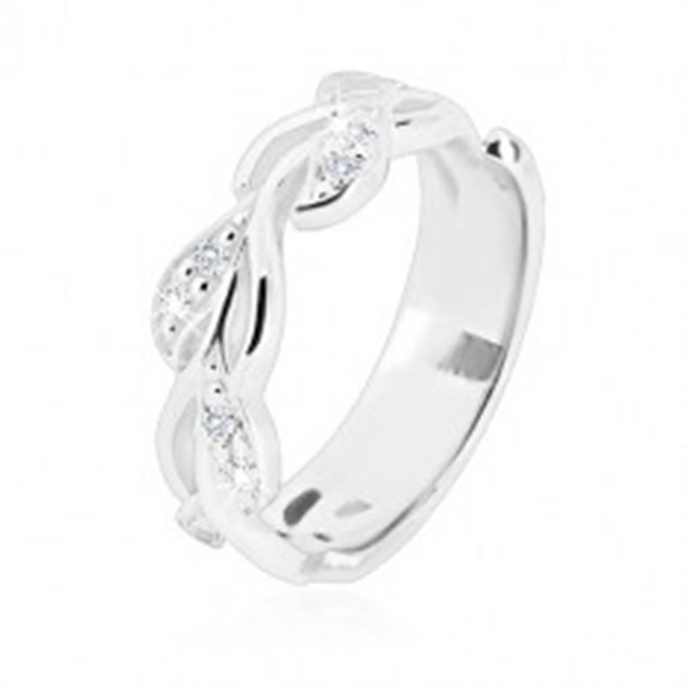 Šperky eshop Strieborný prsteň 925 - lesklá stonka s lístkami a trblietavými zirkónikmi - Veľkosť: 49 mm