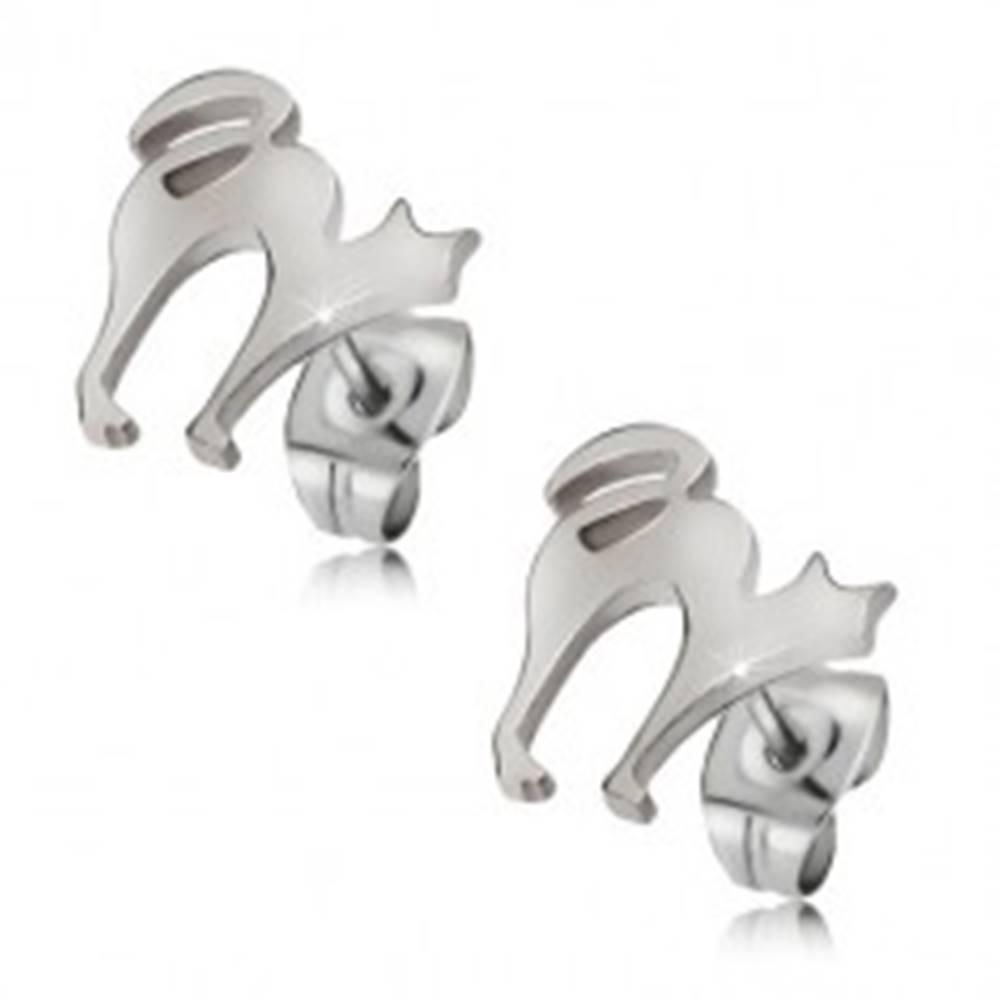 Šperky eshop Oceľové puzetové náušnice - mačka