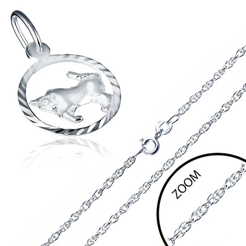 Šperky eshop Náhrdelník striebro 925 - špirálovitá retiazka, znamenie BÝK